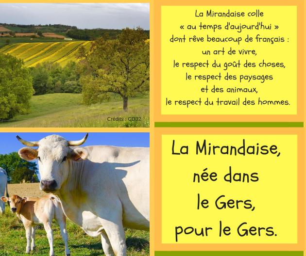 Jornadas de puertas abiertas virtuales en la Escuela Agrícola de Mirande
