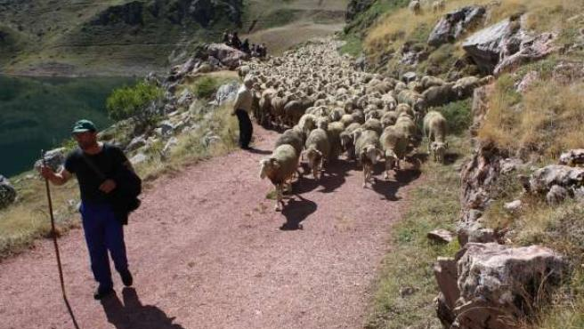 Vacaciones rurales: 10 consejos de los pastores para disfrutar sin dañar la naturaleza