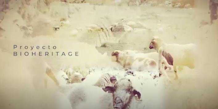 Video – Las claves del proyecto europeo Bioheritage